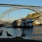 Oporto_DSCF9229